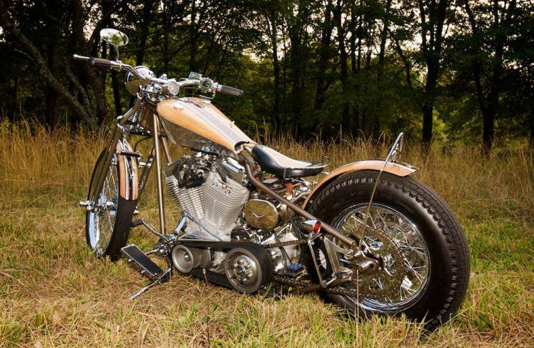 harley custom motorcycle
